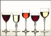 Čaše & vino ... saznajte kakvu čašu treba odabrati za određenu vrstu vina