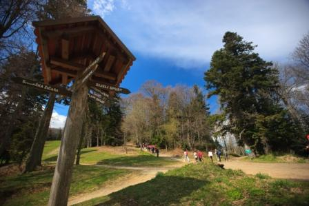 Atraktivne destinacije Parka prirode Medvednica- idealan vikend odmor za cijelu obitelj